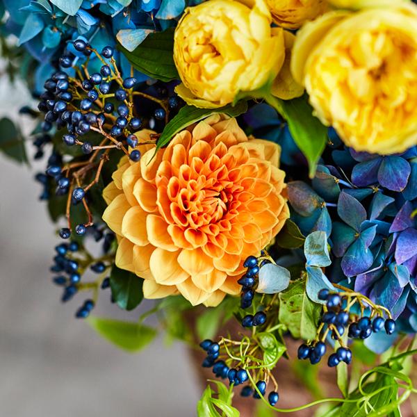 <antina fleur> カラフル ハイベースS