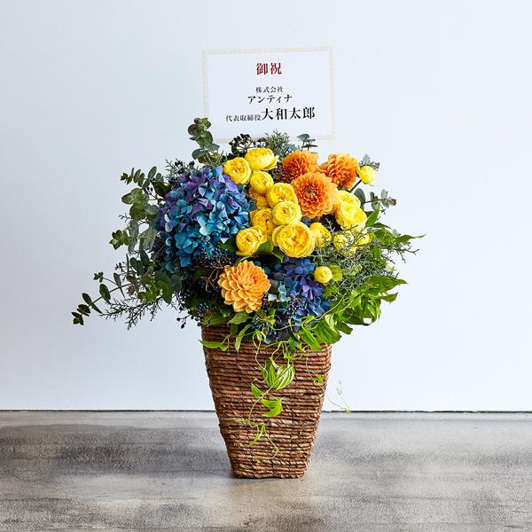 <antina fleur> カラフル ハイベースM
