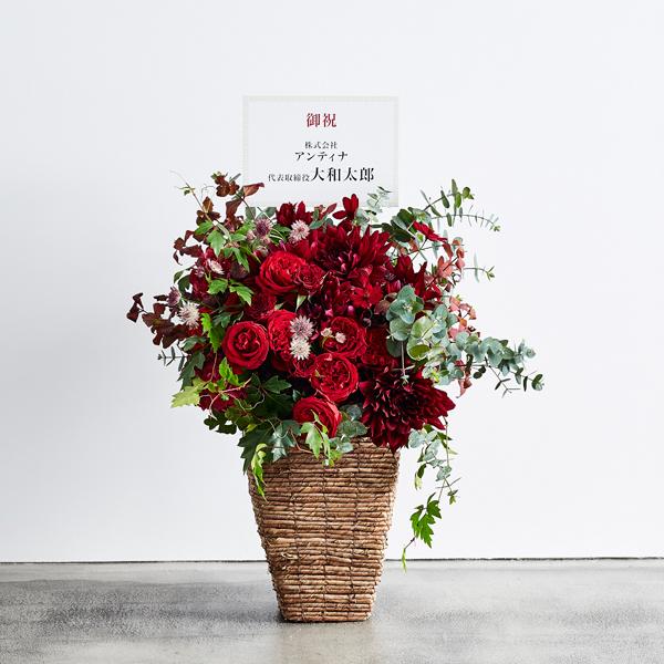 <antina fleur> シック ハイベースM
