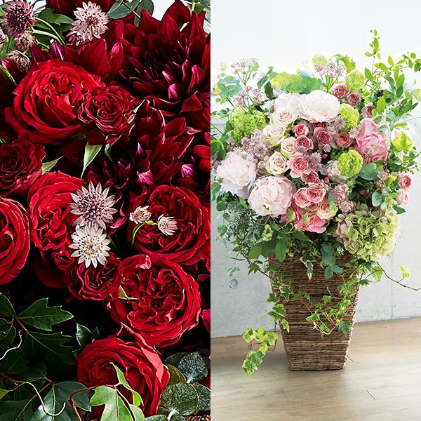 <antina fleur> シック ハイベースL 東京23区内のみ