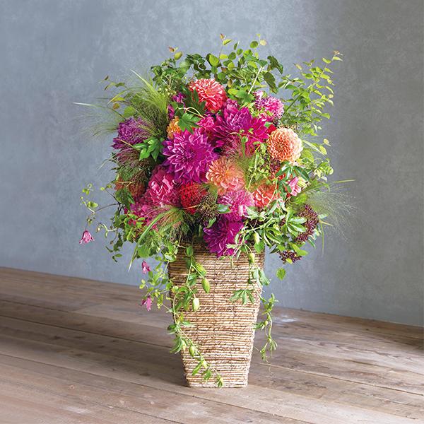 <antina fleur> カラフル ハイベースLL 東京23区内のみ