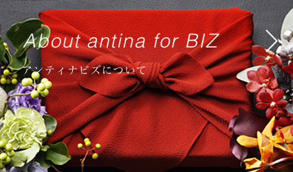 antina for bizについて